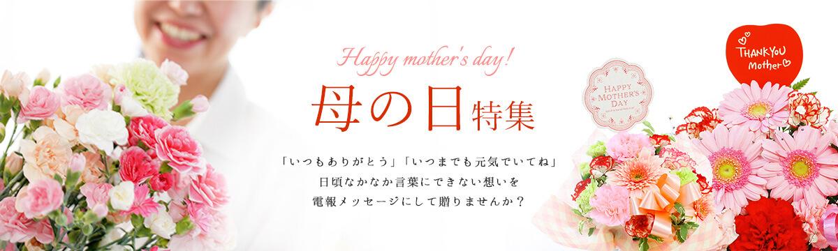 日頃なかなか言葉にできない想いを伝える母の日のお祝いの電報・ギフト特集