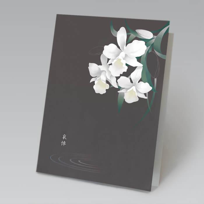 深い灰みの暗中に凛と咲く白いカトレアの花