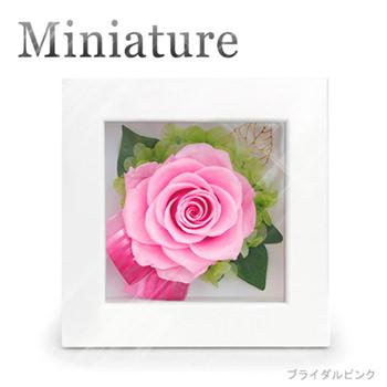 「ミニアチュール ブライダルピンク 白フレーム」サムネイル