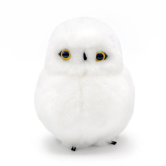 モコモコな体型と大きくキレイな瞳が印象的